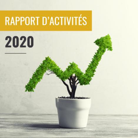 image-article-site-pro-rapport-activite-2020-oisetourisme